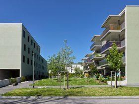 CREALINE GG-1003 - Développement du logement Erlenau Münsingen